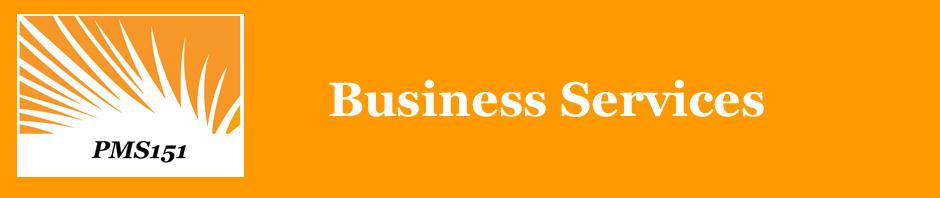 PMS151 Business Services
